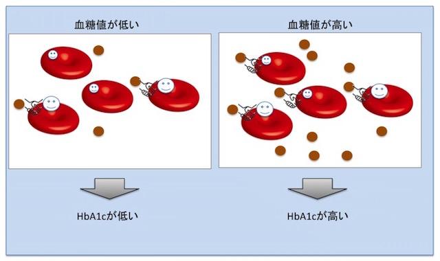 糖化ヘモグロビン